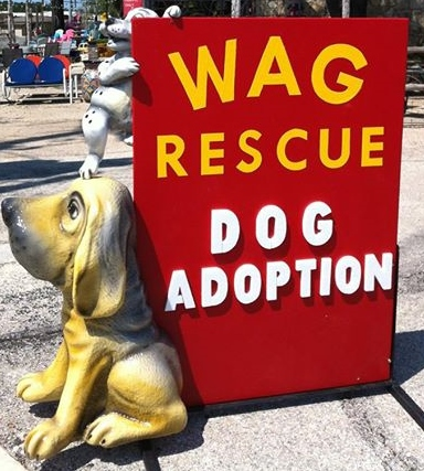 Adoption Days - Wimberley Adoption Group & Rescue