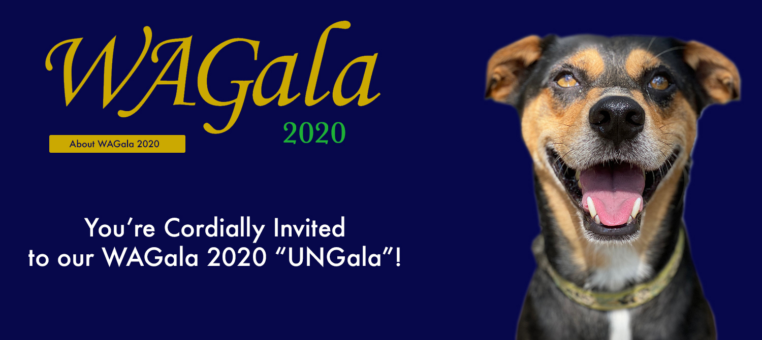 About WAGala 2020